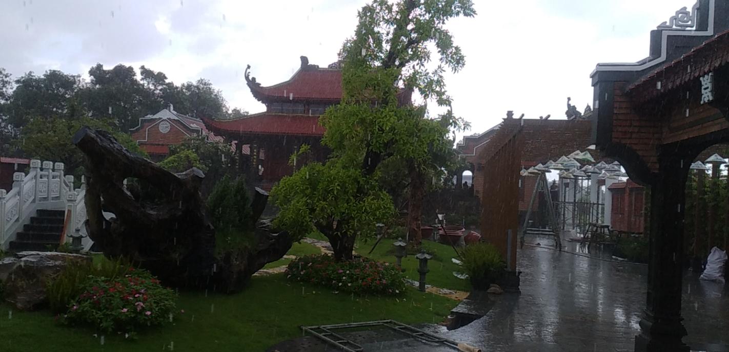 Khuôn viên tư gia anh Quỳnh, Long An